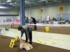 dogshow_max700px-11